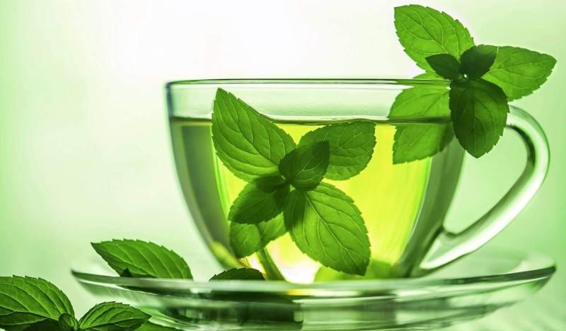 Зеленый чай с мятой: польза для организма и рецепты