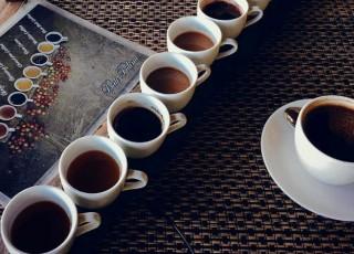 Каппинг кофе: что это такое и как проводится